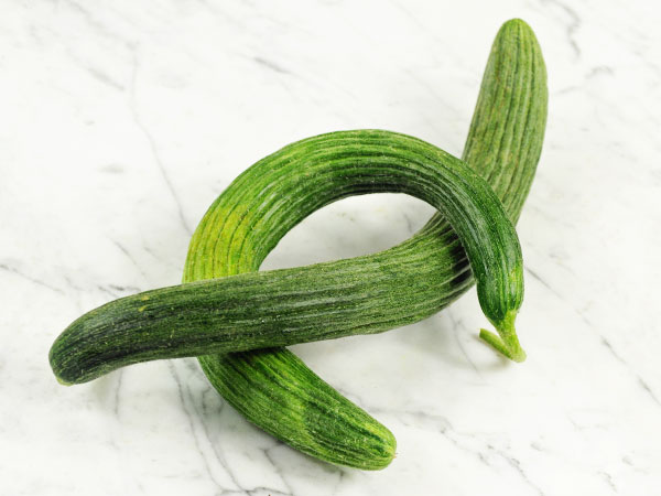 Metki Dark Green Serpent Melon (Armenian)